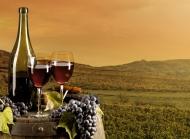 最美味葡萄酒高清桌面壁纸 第一辑