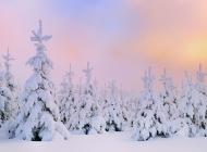 冬季雪景风光唯美电脑壁纸1920X1200