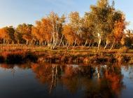 新疆秋色风景图片电脑壁纸