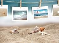 风景壁纸贝壳图片唯美桌