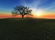 人文景观融合自然风景壁