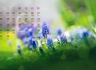 2015年6月日历壁纸精选绿色护眼简约风格好看高清图片下载4