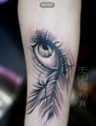 精美流行的一张眼睛与羽毛纹身图片