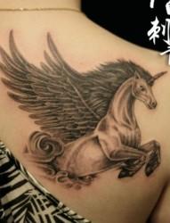 一张女孩子肩背独角兽纹身图片