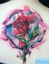 女人后背流行精美的彩色玫瑰花纹身图片