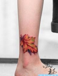 腿部漂亮精美的彩色树叶纹身图片