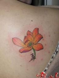一张肩背彩色莲花纹身图片