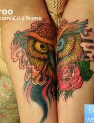 女人手臂经典好看的猫头鹰纹身图片