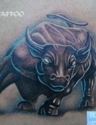男生肩背超酷经典的一张公牛纹身图片