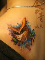 肩背小巧可爱的猫头鹰纹身图片
