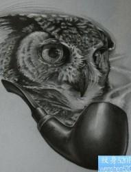 一张经典超酷的黑白猫头鹰纹身手稿