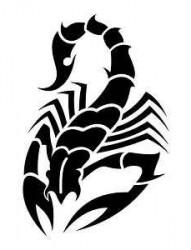 蝎子纹身图片:图腾蝎子纹身图片图案