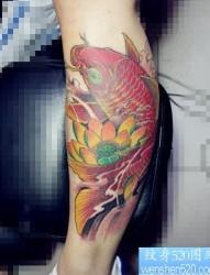 腿部华丽的彩色鲤鱼莲花纹身图片