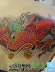 一张美女背部彩色鲤鱼纹身图片