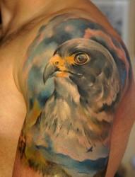 男生手臂超帅的欧美彩色老鹰纹身图片