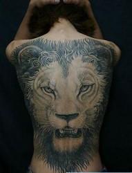 狮子纹身图片:满背狮子头纹身图案