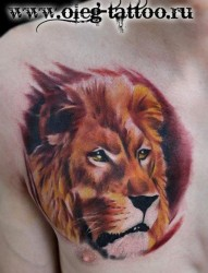 男生胸部超酷霸气的彩色狮头纹身图片