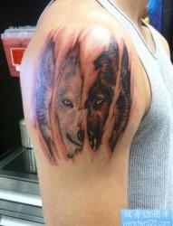 手臂霸气超酷的撕皮狼头纹身作品
