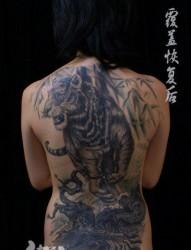 美女背部超帅的满背老虎纹身图片