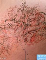 帅气很酷的一幅龙纹身手稿