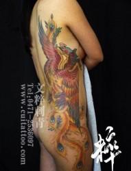 美女腰部唯美精美的凤凰纹身图片