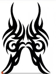 纹身520图库:图腾纹身图片作品