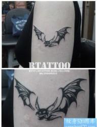 手臂小巧经典的图腾蝙蝠纹身图片
