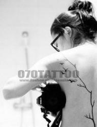 美女背部图腾树小鸟纹身