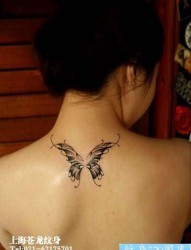 美女背部潮流漂亮的蝴蝶纹身图片