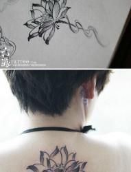 女人后背流行唯美的黑白莲花纹身图片