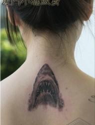 女人后背潮流很酷的鲨鱼纹身图片