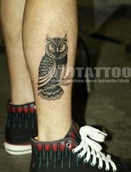 小腿图腾猫头鹰纹身图片
