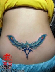 美女腰部潮流好看的羽毛腰花纹身图片