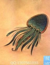 腰部一幅流行的水母纹身图片