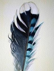 非常好看的羽毛手稿