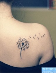 女孩子喜欢的肩背蒲公英纹身图片