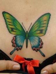 胸部纹身图片:潮流经典胸部彩色蝴蝶纹身图片纹身作品