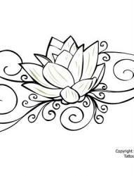 一张非常简单的莲花手稿