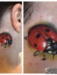 脖子处潮流小巧的一幅七星瓢虫纹身图片
