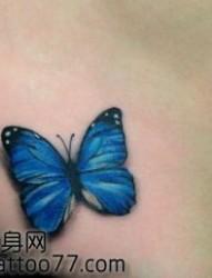 唯美的美女臀部彩色蝴蝶纹身图片