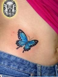 腹部纹身图片:美女腹部彩色蝴蝶纹身图片纹身作品