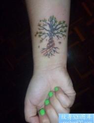 女人手腕处流行的小树纹身图片