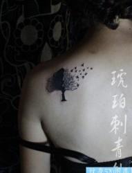 美女肩膀精美时尚的小树纹身图片