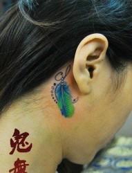 女人后背精美的彩色小羽毛纹身图片