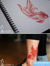腿部一幅彩色小金鱼纹身图片