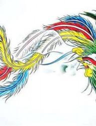 一张漂亮的凤凰纹身手稿