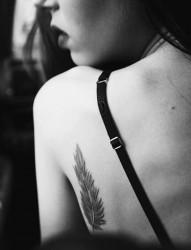 美女身上一根好看的羽毛纹身