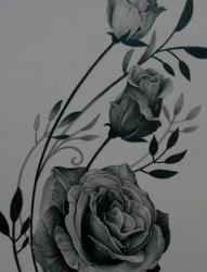 三只玫瑰的素描手稿