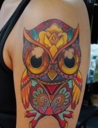 大臂彩色猫头鹰纹身图案图案