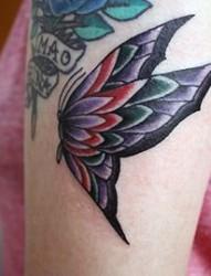 手臂彩色蝴蝶纹身图案